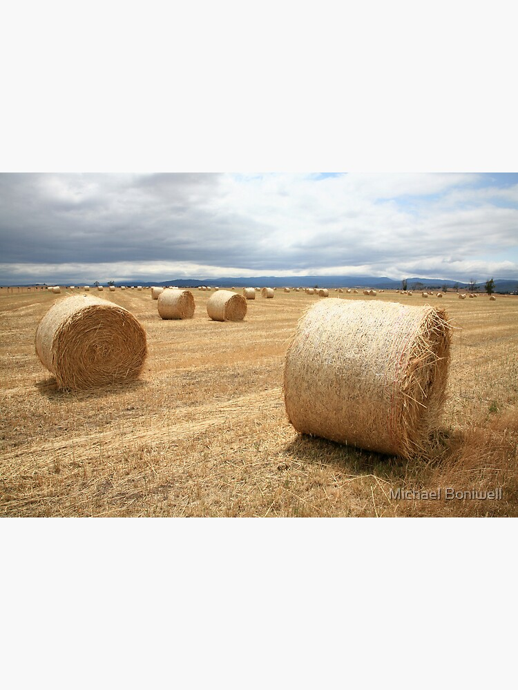 Hay Bales, North East Tasmania, Australia by Chockstone