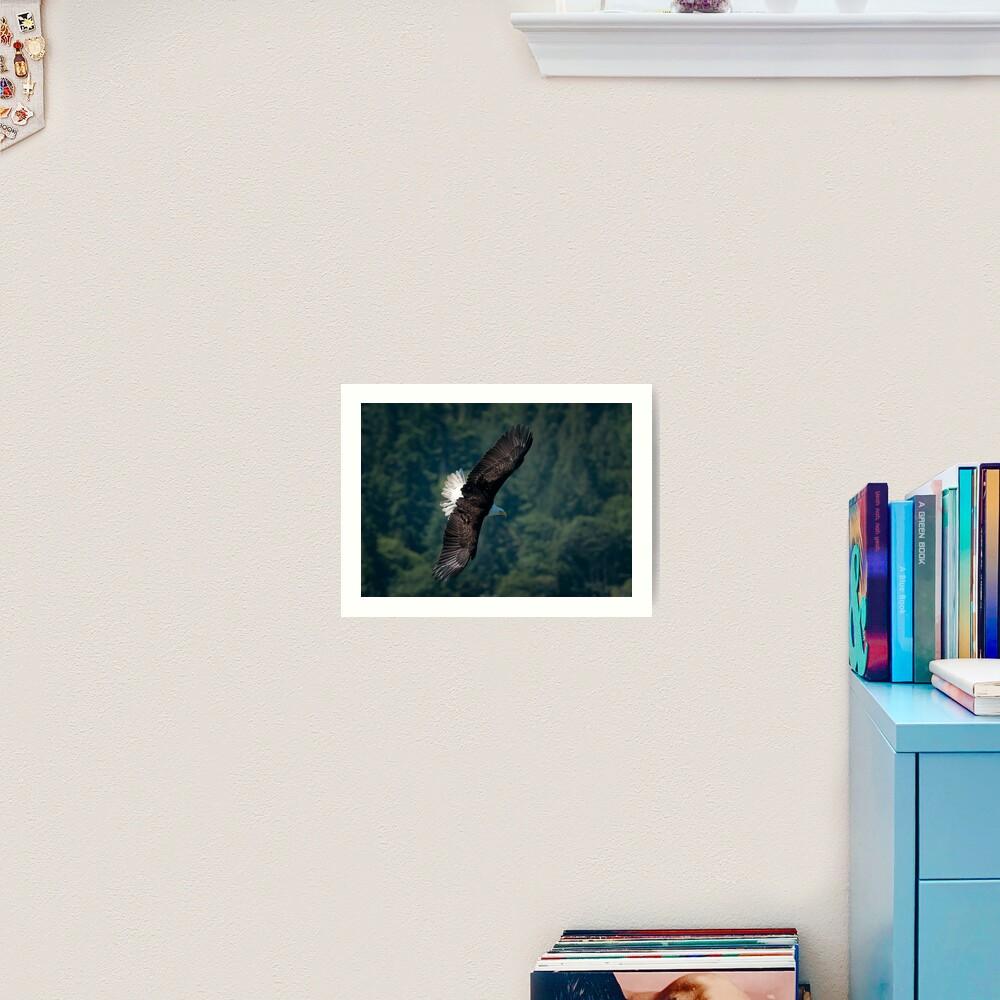 Eagle scouting for prey Art Print