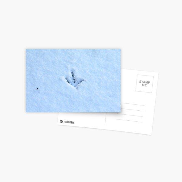 Snow tracks Postcard