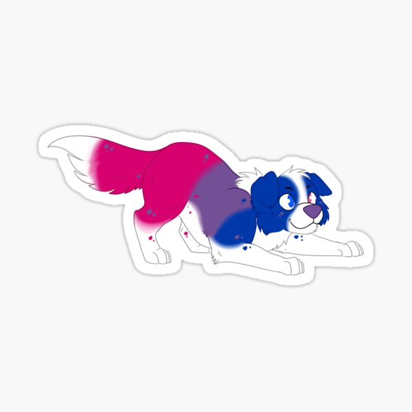 Bisexual Border Collie Sticker