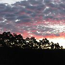 Winter Sunset - Tasmania by pocketdelight