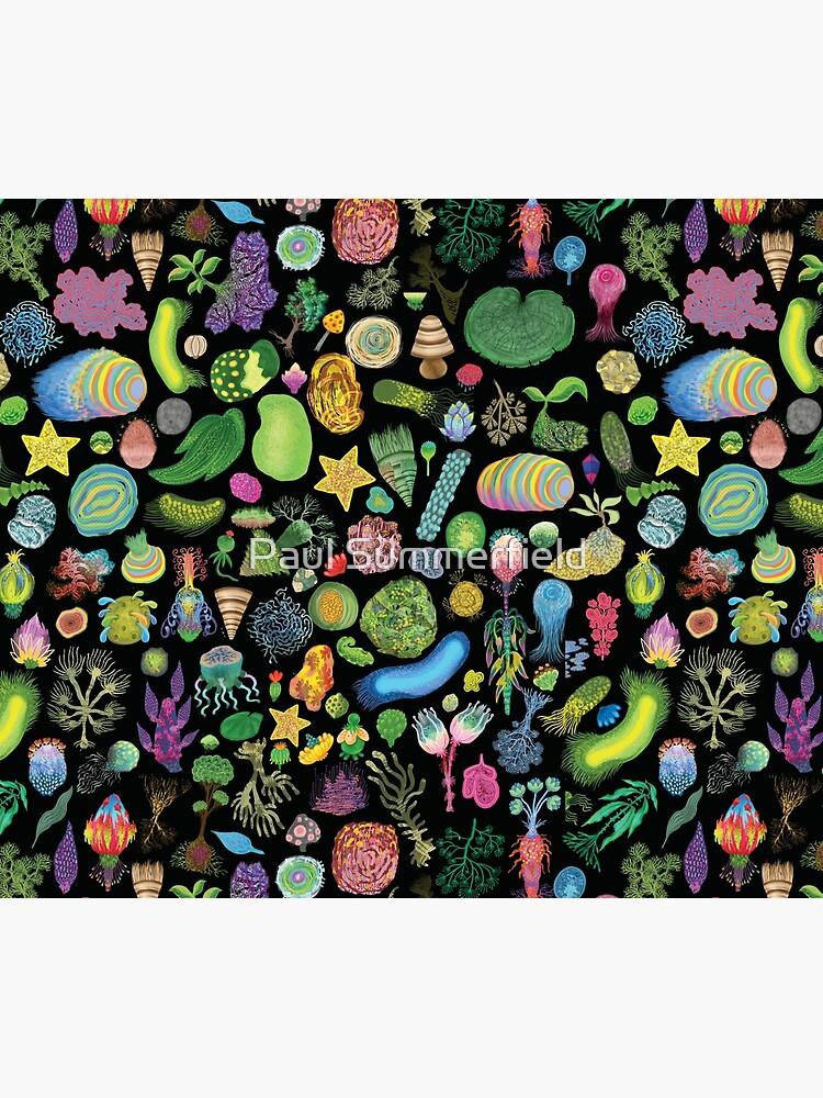 Ocean Slugs & Tasty Cacti by lazykite