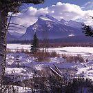 Vermillion Lake Winter by Graeme Wallace