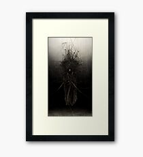 The Nagual Framed Print