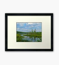 Maine Pond on a Summer Afternoon Framed Print