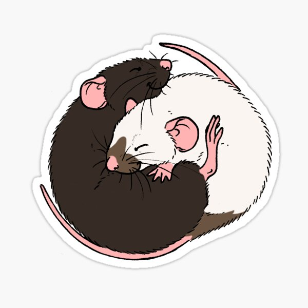 Cuddling Rats Siamese and Black Sticker