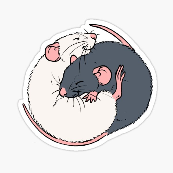 Cuddling Rats Russian Blue and White Sticker