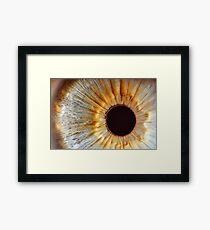 Galaxy eye Framed Print