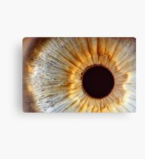 Galaxy eye Canvas Print
