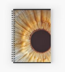 Galaxy eye Spiral Notebook