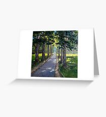 Sunny forest road Greeting Card