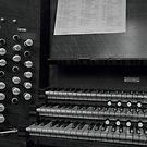 Organ, Shrewsbury Abbey by John Callaway