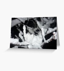 snow on branch - close up Greeting Card