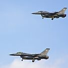 Pair of F-16 Fighting Falcons landing during Red Flag 10-2 by Henry Plumley
