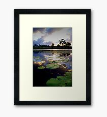 Where the bunyips party Framed Print