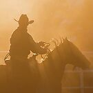 Cowboy sunset by Penny Kittel