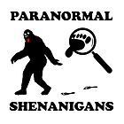 Paranormal Shenanigens by ACProsser