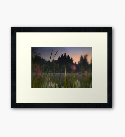 summer wind Framed Print