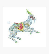 Carousel Goat Photographic Print