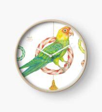 Candy Carolina Parakeet Clock