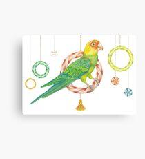 Candy Carolina Parakeet Canvas Print