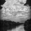 Storm Clouds Rising by Patricia Montgomery