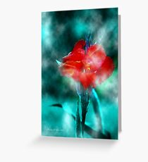 ~ Calla In The Mist ~ Greeting Card