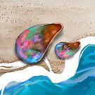 Seashells by Karin Taylor