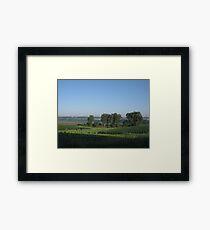 Humid Morning Framed Print