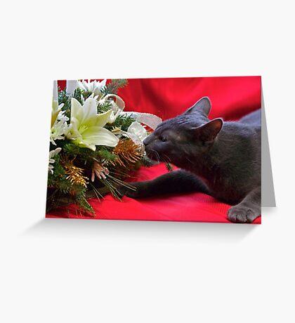 Spot's First Bouquet Greeting Card