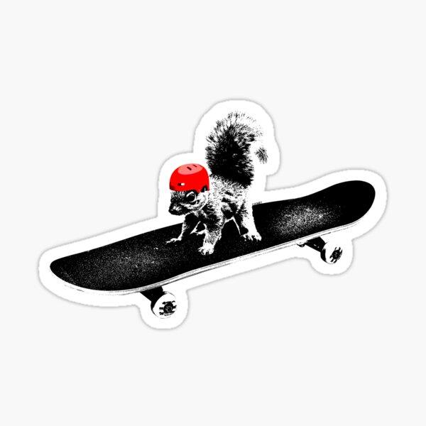 Skateboard Squirrel Sticker