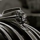 The Chief... Pontiac by kelleygirl