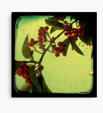 Something in the Air - TTV Canvas Print