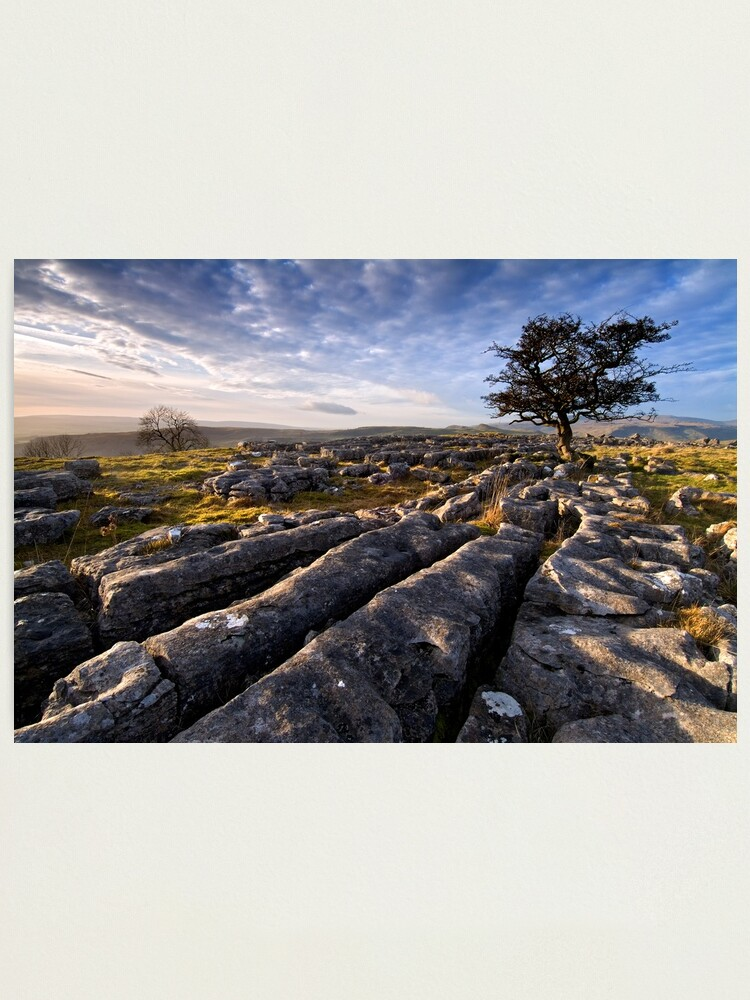 Alternate view of Limestone Country, Ribblesdale - The Yorkshire Dales Photographic Print