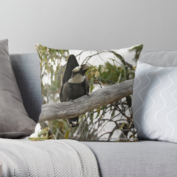 Grey Currawong (1019) Throw Pillow