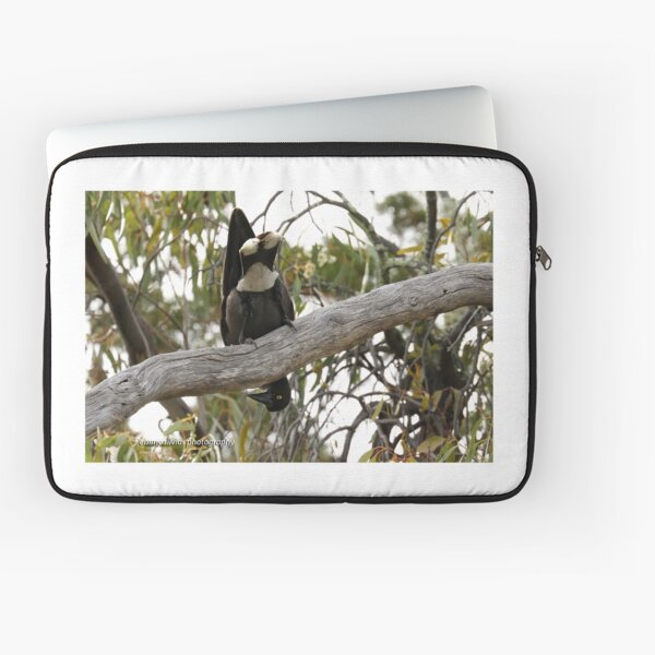 Grey Currawong (1017) Laptop Sleeve