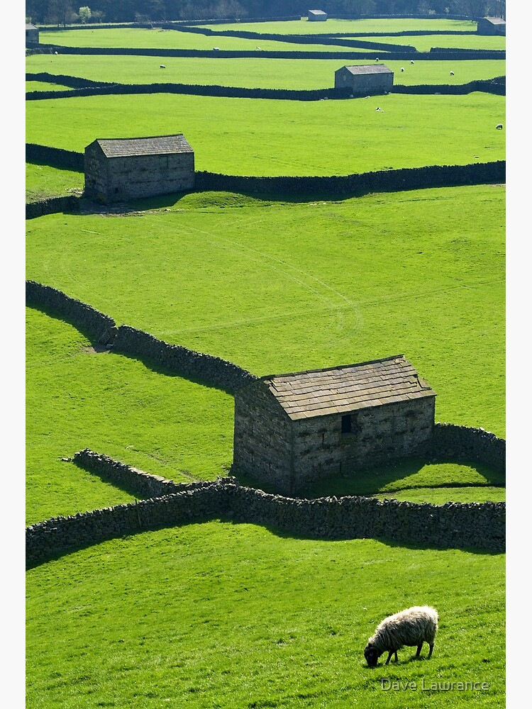 Gunnerside, Yorkshire Dales by DLLP