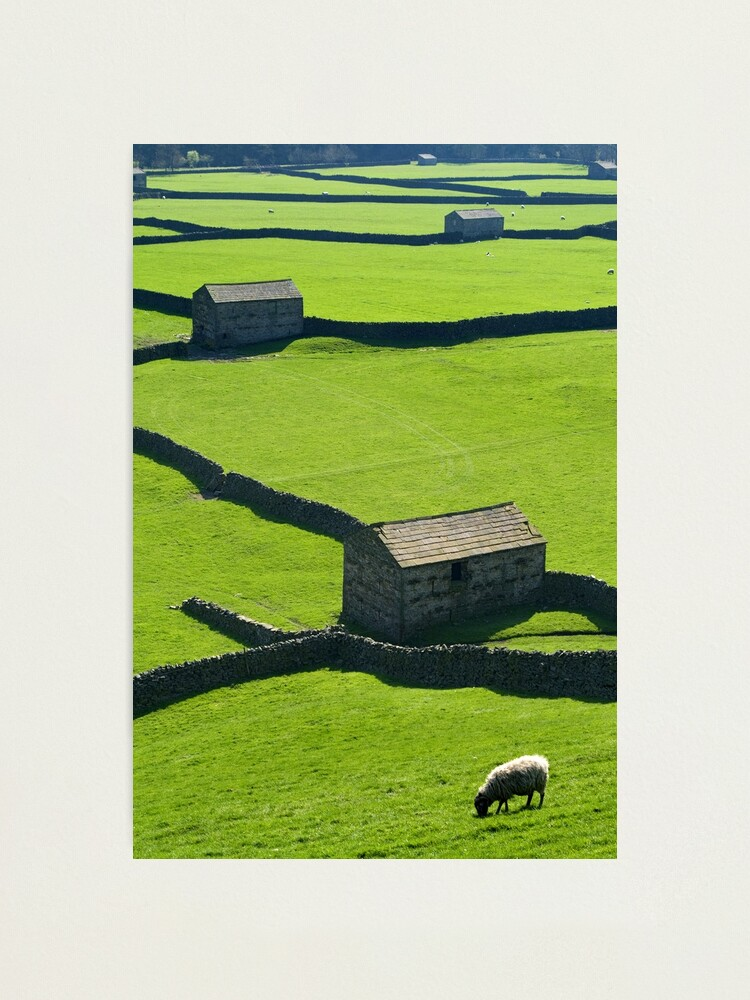 Alternate view of Gunnerside, Yorkshire Dales Photographic Print