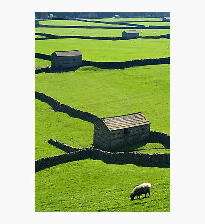 Gunnerside, Yorkshire Dales Photographic Print