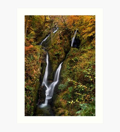Stock Ghyll Force - The Lake District Art Print