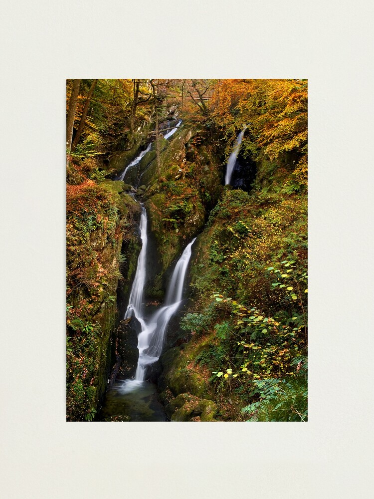 Alternate view of Stock Ghyll Force - The Lake District Photographic Print