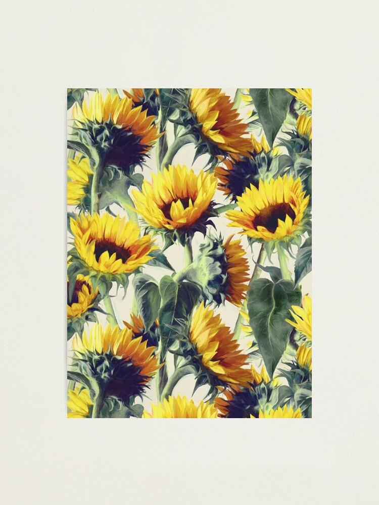 Alternate view of Sunflowers Forever Photographic Print