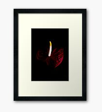 Dark blood Framed Print