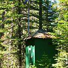 Hi-tech Outhouse  by Borror
