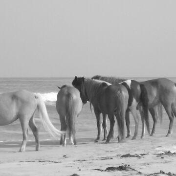 Island Ponies by Amedori