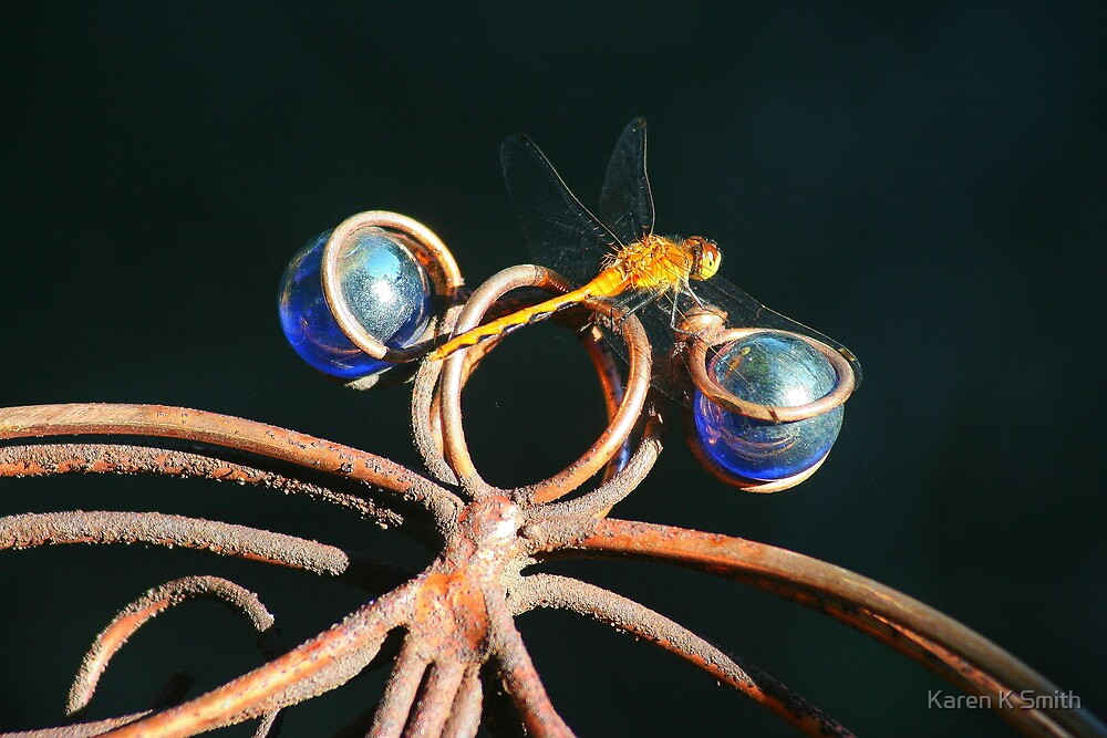 Double Dragonfly by Karen K Smith