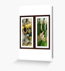 HoneySuckles Greeting Card