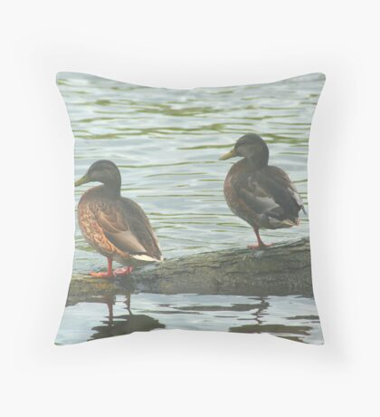 Watching the River Run Throw Pillow