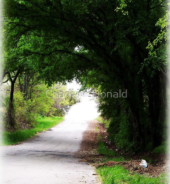Down the Backroads by Charli McDonald
