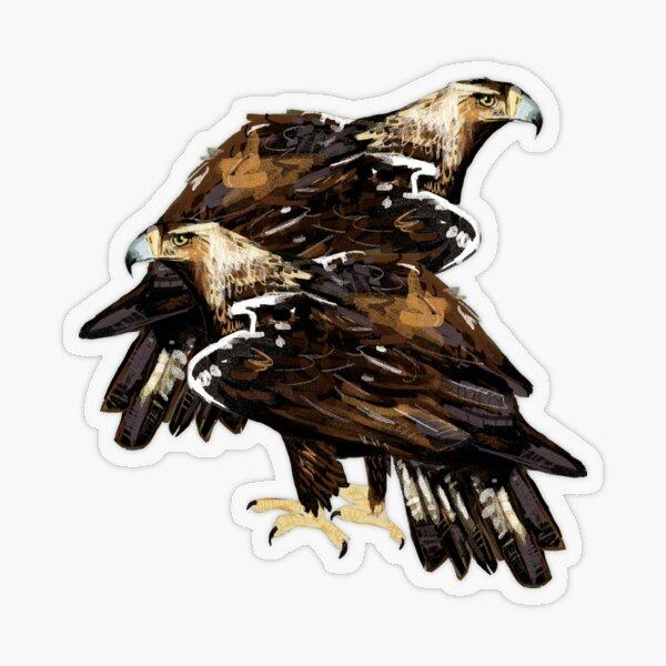 Iberian imperial eagle #2 Pegatina transparente